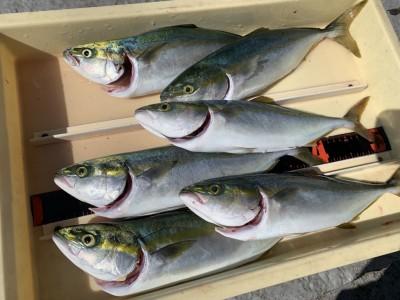 <p>沖の北 ツバス ジグでの釣果です♪のませ釣りではなくジグでこれだけの釣果はお見事です(^O^)</p>