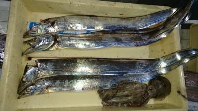 <p>高倉様 沖の北 テンヤ/タチウオ タコジグ/タコGET</p> <p>タコも釣れてますね(^O^)おめでとうございます!</p>