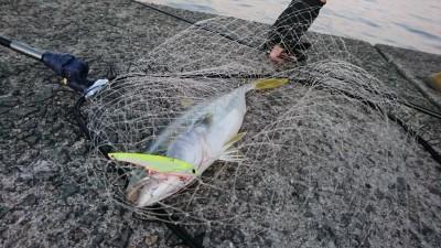 <p>沖の北リアルタイム(5:40) ショアジギでツバスが釣れていました!</p>