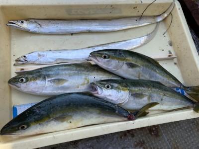 <p>旧一文字 赤灯 太刀魚・ツバス〜ハマチ 青物はのませ釣りでの釣果です。沖の一文字だけでなく旧一文字でも青物狙えます!やはりのませ釣りをされてる方のほうが釣果が出てますね♪おめでとうございます^o^</p>