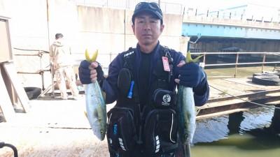 <p>田中様 沖の北 ジグ ツバスGET</p> <p>ジグでも青物釣れてますね!(^O^)おめでとうございます</p>