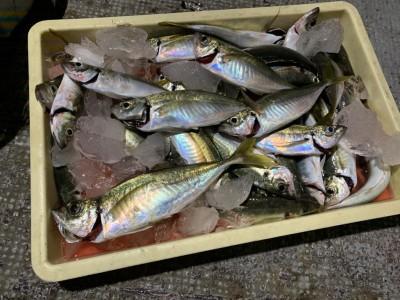 <p>山本様 沖の北 飛ばしサビキで中アジ多数GET♪15時半頃から釣れ出し最大33cmありましたよ!おめでとうございます(^o^)</p>