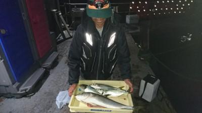 <p>山田様 沖の北 ノマセでツバス~メジロGET</p> <p>昼からの釣果です!ノマセは安定して釣れますよ♪おめでとうございます</p>