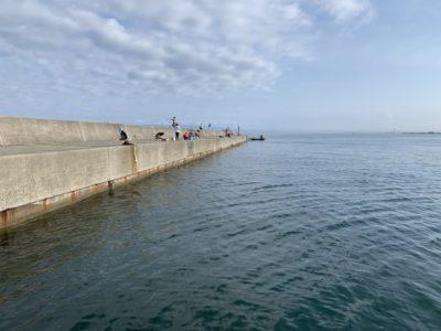 <p>沖の北リアルタイム(7:30) 本日も小サバ祭り!アジの棚は底ですよ!サバをうまく交わして底で狙ってくださいね(^^)新子のタコの釣果も確認♪</p>