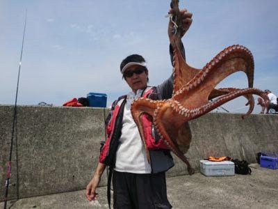 <p>駿パパ様 沖の北 テンヤでタコ2.5kg!!!他にも700gのと新子4つ♪新子はリリースしてくださいました♪さすがです!</p>