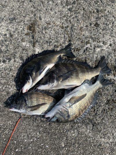 <p>羽地様 沖の北 落とし込み(イガイ)での釣果です♪落とし込みの釣果は好調キープしていますね^ ^おめでとうございます(^o^)</p>