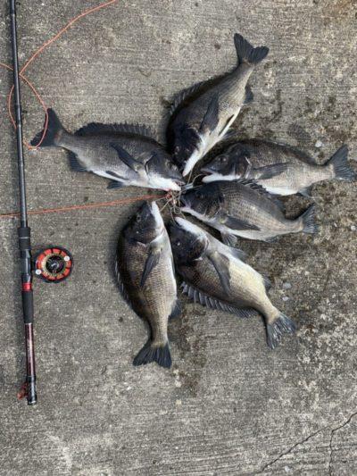 <p>羽地様 沖の北 落とし込み(イガイ)での釣果です♪45cmまでを6枚GET^ ^</p>