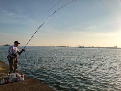 <p>濱本様 沖の北内向き フカセ釣りで40後半のチヌ!餌取りはいますがそこまでうるさくない感じてした。外向き足元に見えチヌが沢山いましたよ。</p>