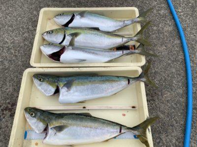 <p>高倉様 沖の北 のませ釣りでハマチ〜メジロ5匹!!流石の釣果です♪本日も青物は良く釣れていましたが、朝のアジが渋かった様です(ToT)中アジは雨後が良さそうです!</p>