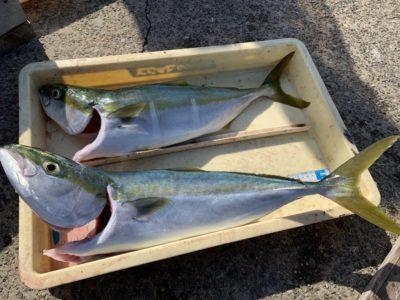 <p>匿名様 沖の北 のませ釣りでハマチ〜メジロ2匹 GET♪青物ラッシュ継続中です^ ^</p>