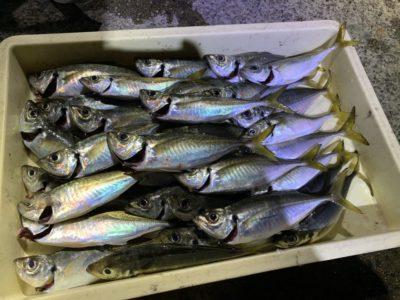 <p>田所様 沖の北 飛ばしサビキで中アジ大量♪♪昨日に続いて今日も良く釣れてますね^ ^</p>