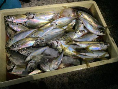 <p>白田様 沖の北 飛ばしサビキで中アジ大量〜♪今日は14時半頃から良く釣れ続いたみたいです^ ^</p>