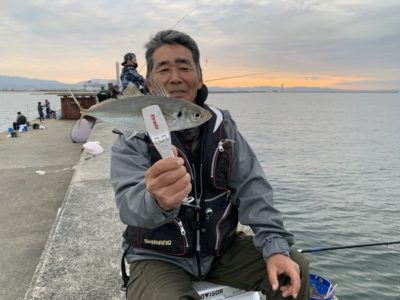 <p>磯田名人様 沖の北 飛ばしサビキで良型の中アジ GET♪今日は16時頃から外向きで良く釣れてました!</p>