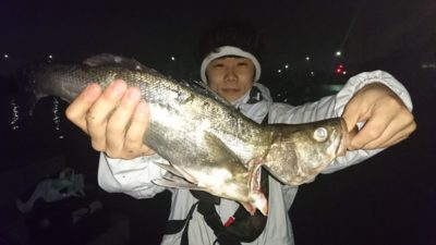 <p>トウヤ様 沖の北 飲ませ ハネGET</p><p>15:00頃からハネ~スズキサイズが良く釣れます!必ずイワシ飲ませで狙ってくださいね(^^♪</p>