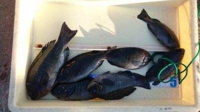 <p>山田様 沖の北 フカセ グレGET</p><p>グレは今年安定して釣れています!(^^♪</p>