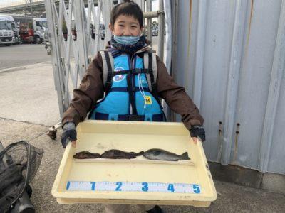 <p>仁木様 沖の北 サビキ釣りでガシラとグレGET♪</p>