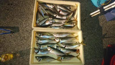<p>白田様 沖の北 サビキ アジ~31cmまでGET</p><p>今日は外向きで大きいのは釣れたようです(^^♪</p>