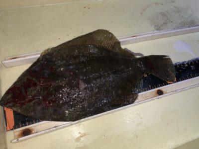 <p>沖の北 投げ釣りでカレイ32cm!!昼からの釣果です!</p>