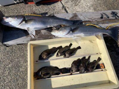 <p>川原様 沖の北 エビ撒きで63cmまでのハネ2匹とメバル・ガシラもGET♪♪</p>