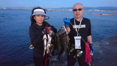 <p>西田様夫婦 沖の北 落とし込み チヌ~48cmまでお二人で16尾GET</p><p>落とし込みチヌ良く釣れてます(^^♪型も良いのが多いです</p>