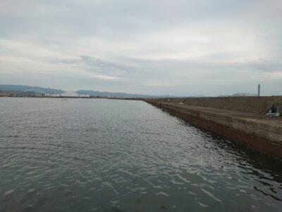 <p>久しぶりの出船。大雨で旧も沖も水潮で白っぽい感じです。底荒れはしてないので泥濁りはなし。タコの釣果も確認できました。状況はそこまで悪くはなってないみたいです。</p>